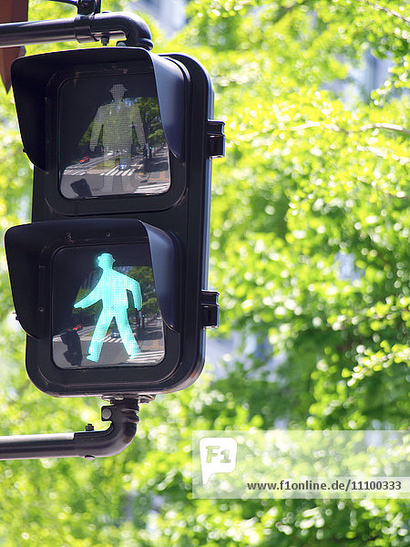 Green Pedestrian Light