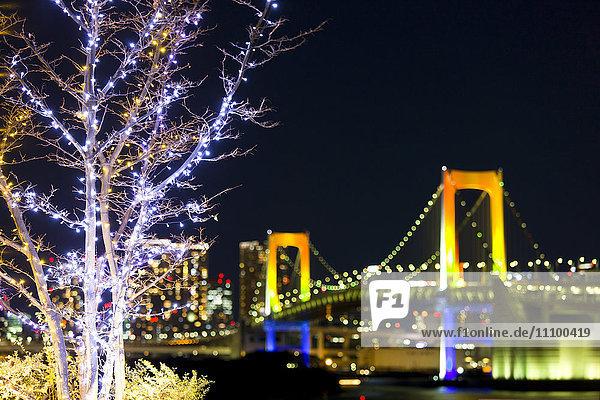 Rainbow Bridge and Christmas Lights
