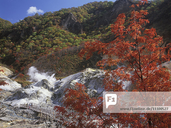 Jigokudani (Hell Valley) in Autumn