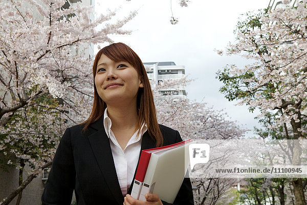Businesswoman Surrounded by Cherry Blossom Trees
