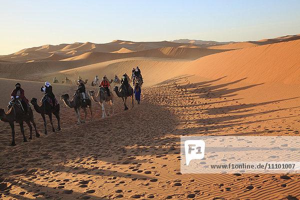 Desert  Merzouga  Morocco