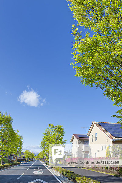 Houses with solar panels on rooftop  Japan
