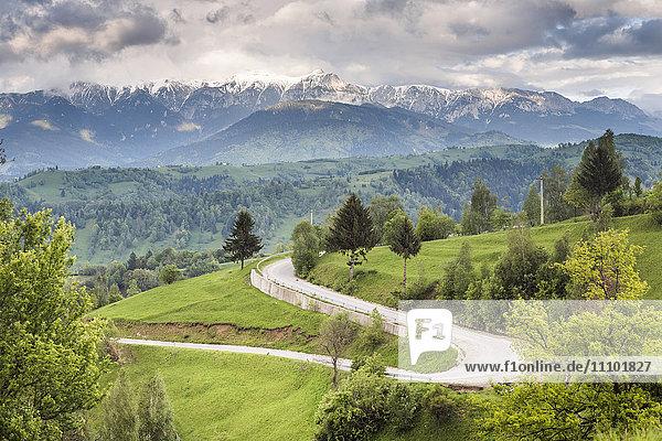 Rural countryside and Carpathian Mountains near Bran Castle at Pestera  Transylvania  Romania  Europe