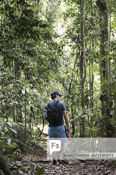 Tourist on a jungle trek in Gunung Leuser National Park  Bukit Lawang  North Sumatra  Indonesia  Southeast Asia  Asia
