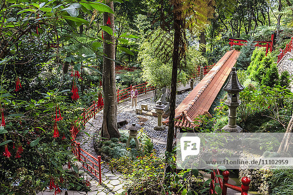 Oriental garden  Monte Palace Tropical Garden  one of Madeira's most famous  Monte  Funchal  Madeira  Atlantic  Portugal  Europe