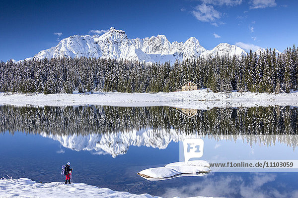 Hiker admires the snowy peaks and woods reflected in Lake Palu  Malenco Valley  Valtellina  Lombardy  Italy  Europe