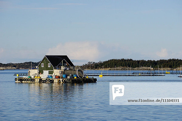 Fish farm with floating house  Aversund Fjord  near Bergen  Hordaland  Norway  Scandinavia  Europe