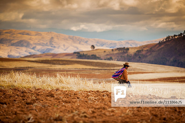 Farmer walking home at sunset  Sacred Valley  Peru  South America