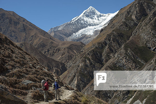 Trekking in the Kagmara valley in Dolpa  a remote region of Nepal  Himalayas  Nepal  Asia