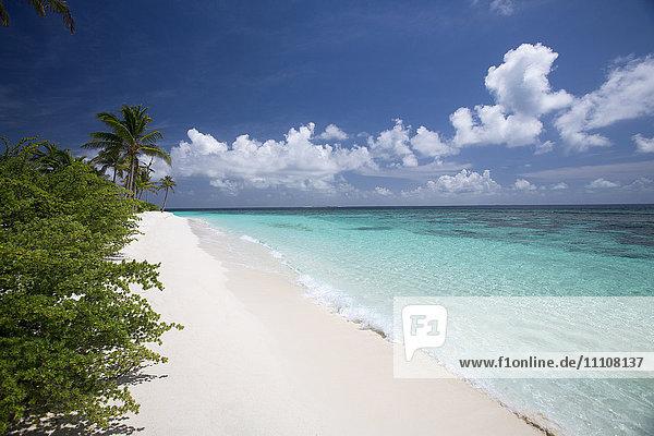 Tropical island and lagoon  Maldives  Indian Ocean  Asia
