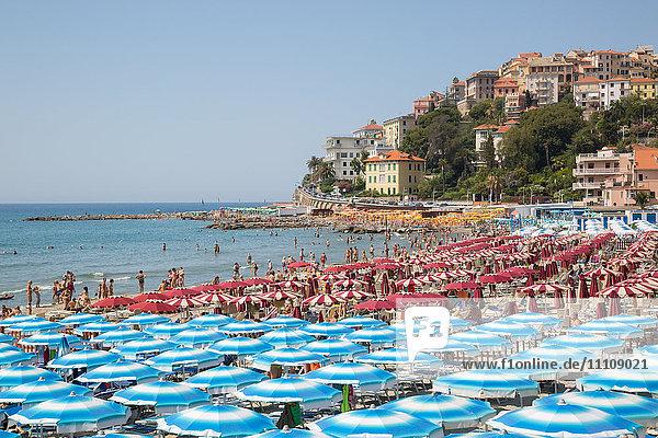View of Imperia Harbour  Imperia  Liguria  Italy  Europe
