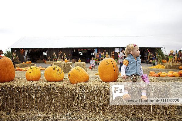 Caucasian girl sitting with pumpkins in pumpkin patch