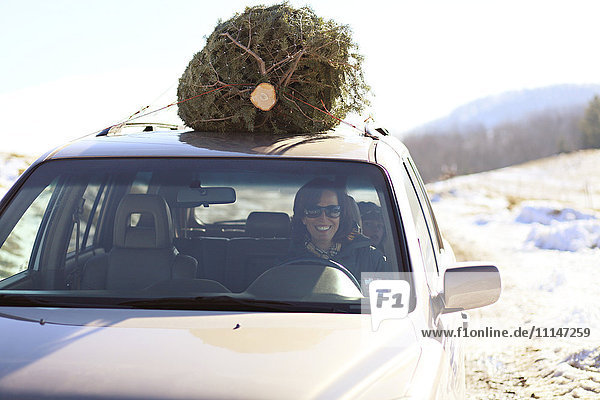 Woman driving Christmas tree home on car roof