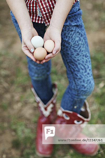 Caucasian girl holding chicken eggs on farm