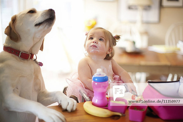 Caucasian girl and dog eating at table
