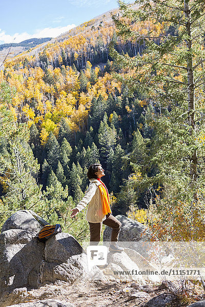 Mixed race woman admiring scenic view in forest