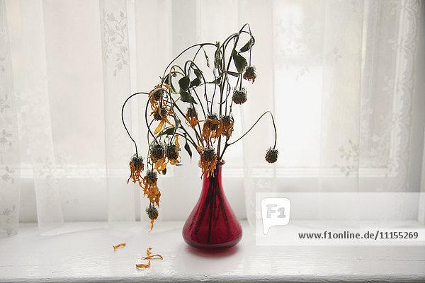 Bouquet of wilting flowers in windowsill