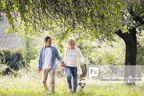 Seniorenpaar auf einem Spaziergang mit Hund in der Natur