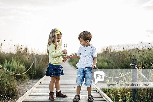Kleiner Junge geschenktes kleines Mädchen Blumen auf Strandpromenade in der Natur