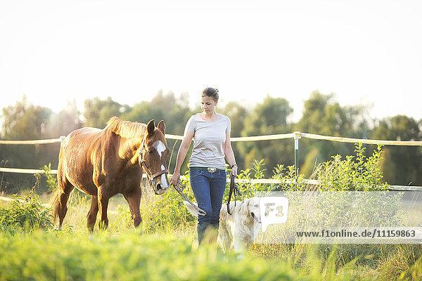 Junge Frau beim Spaziergang mit Pferd und Hund