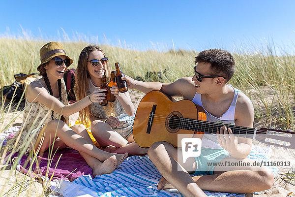 Freunde toasten mit Bierflaschen am Strand