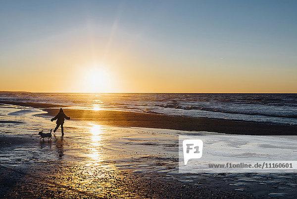 Dänemark  Nordjütland  Junge mit Hund am Strand bei Sonnenuntergang Dänemark, Nordjütland, Junge mit Hund am Strand bei Sonnenuntergang