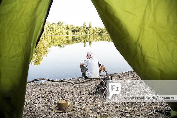Senior man with dog camping at a lake