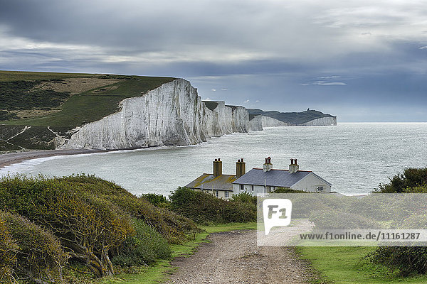UK  Sussex  Seaford  Seven Sisters Country Park  Seaford Head  Blick auf Seven Sisters Chalk Cliffs