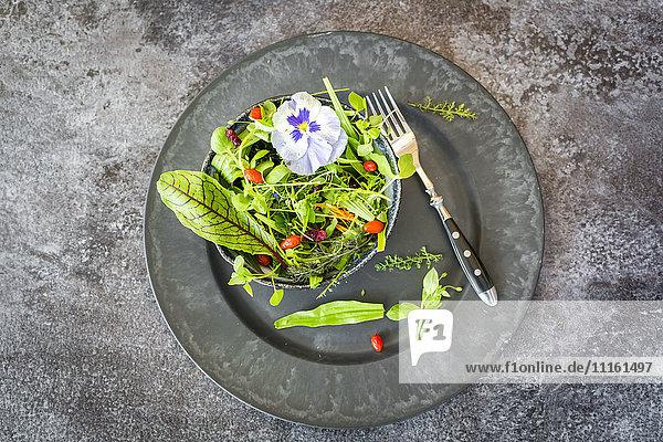 Schüssel mit Wildkräutersalat mit essbaren Blumen,  Preiselbeeren und Wolfsbeeren auf dem Teller