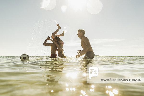 Verspielte Freunde im Meer