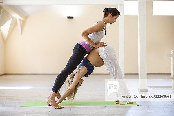 Pränatales Yoga  Yogalehrerin  nach unten gerichtete Hundehaltung
