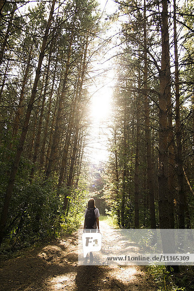 Caucasian woman walking on tree-lined forest path