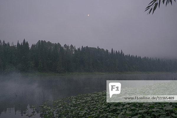 Moon over foggy river