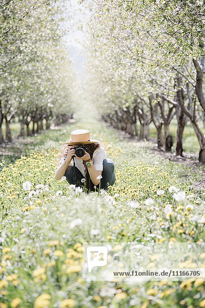 A woman taking photographs in an orchard among wild flowers.