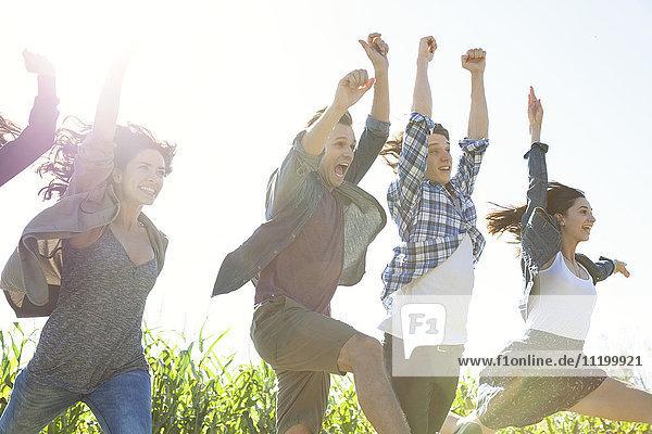 Freunde feiern Freundschaftsbande