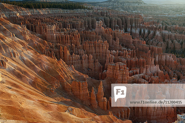 Bryce Canyon Nationalpark  Utah  USA