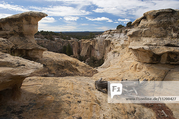 El Morro National Monument  New Mexico  USA