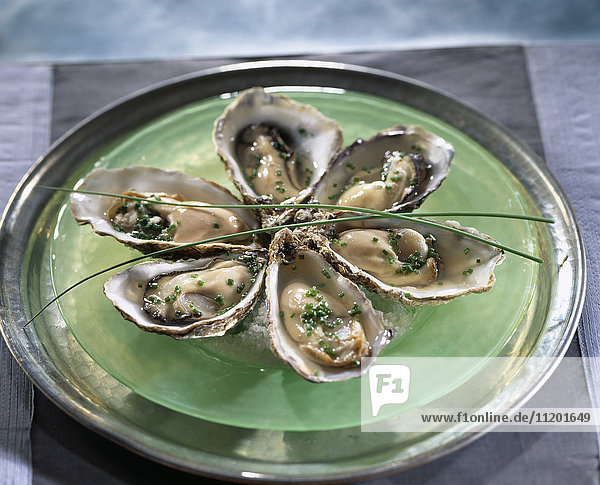 Oysters in aspic