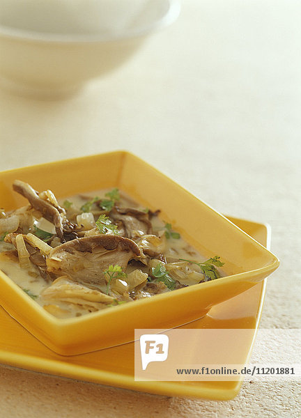 Pleurotus mushroom in creamy chervil sauce