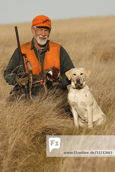 Pheasant Hunter With Yellow Lab In Field
