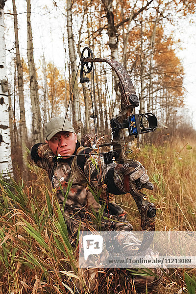 Bowhunter Drawing Bow In Aspen Trees