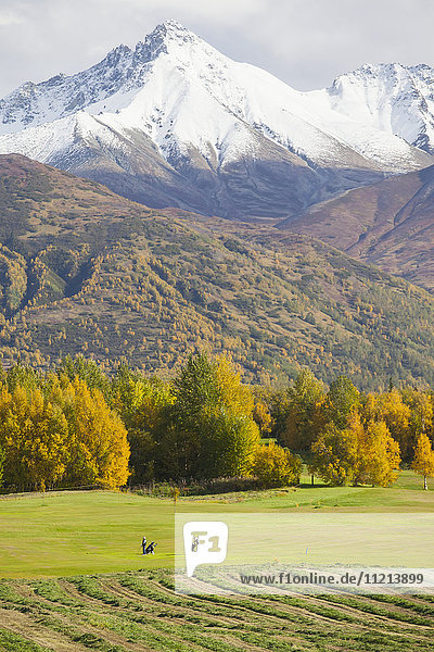 Golfers at golf course on Fishhook Road outside Palmer in Autumn. Southcentral Alaska.