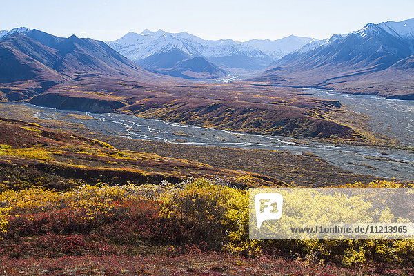 Colorful tundra scenic  Denali National Park & Preserve. Interior Alaska. Autumn.