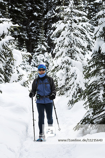 'Female snowshoer on trail with snow covered trees; Lake Louise  Alberta  Canada'