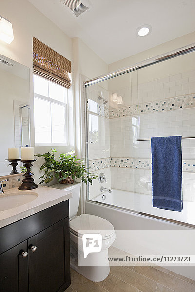 Contemporary bathroom with commode and glass shower in the bathroom at home