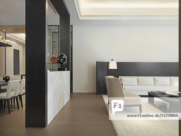 Minimalistic living room with area rug