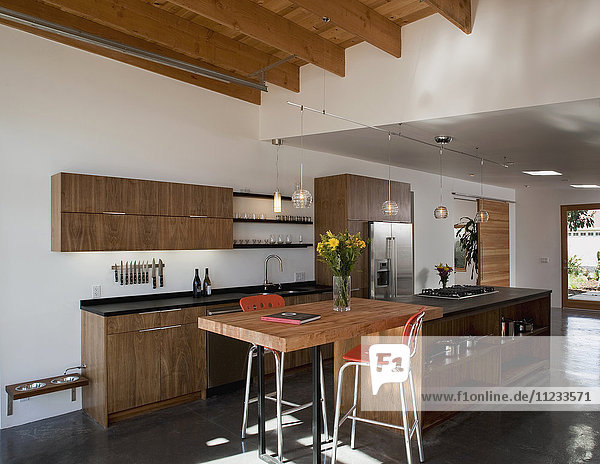Modern kitchen in eco friendly home