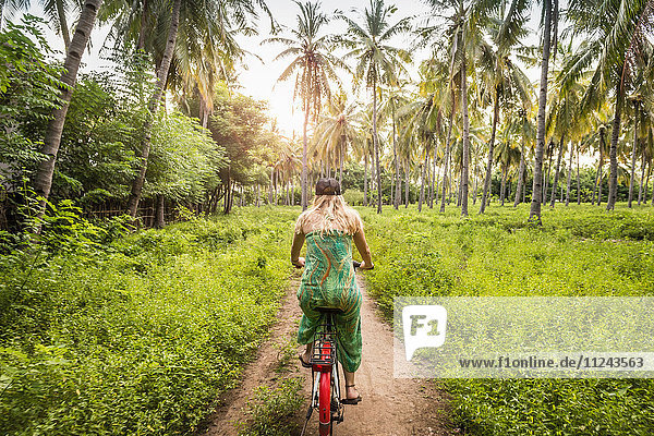 Rear view of young woman cycling in palm tree forest  Gili Meno  Lombok  Indonesia