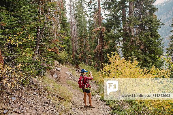 Frau beim Wandern  Aussichtsfotografie  Mineral King  Sequoia-Nationalpark  Kalifornien  USA
