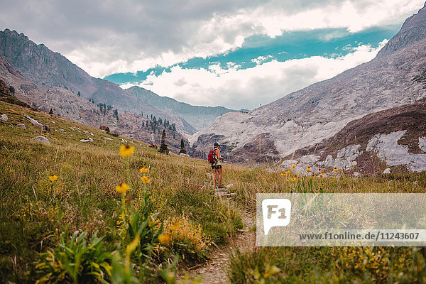 Woman hiking through valley  Mineral King  Sequoia National Park  California  USA